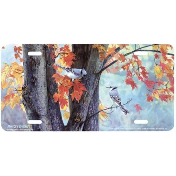 """Fall Colors"" Blue Jay License Plates"