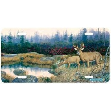 Beautiful Whitetail Deer License Plate