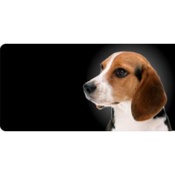 Beagle Dog Photo License Plate