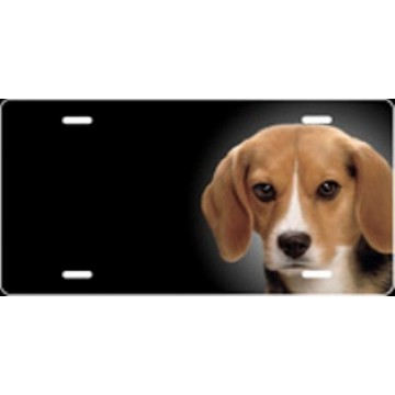Beagle Dog Airbrush License Plate
