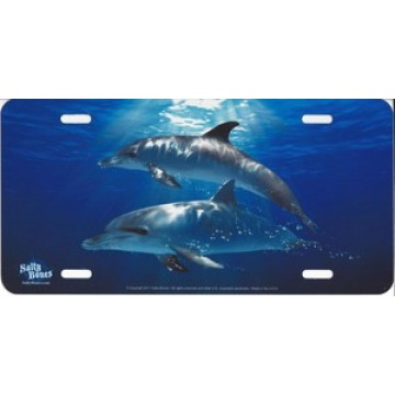 Dolphins in Water Airbrush License Plate