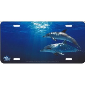 Dolphins in Water Offset Airbrush License Plate