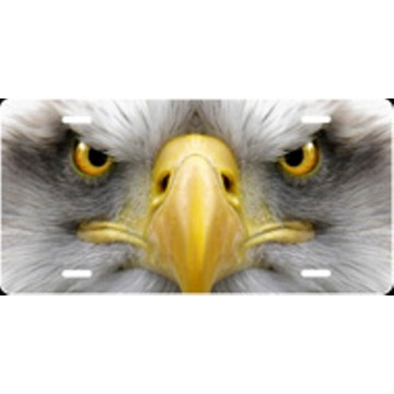Eagle Face Airbrush License Plate