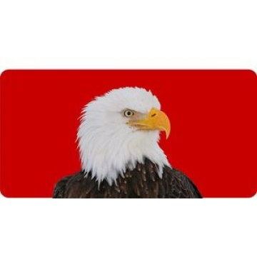 Bald Eagle On Red Photo License Plate