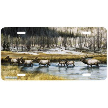 """Autumn Procession"" Elk License Plate"