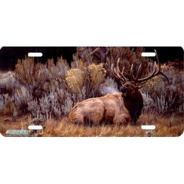 """Sagebrush Sonata"" Elk License Plate"