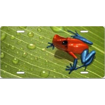 Dart Frog On Leaf Airbrush License Plate