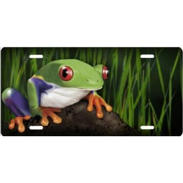 Frog In Reeds Airbrush License Plate