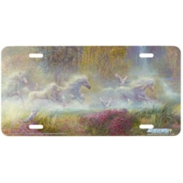"""""""God's Breath"""" Horse License Plate"""