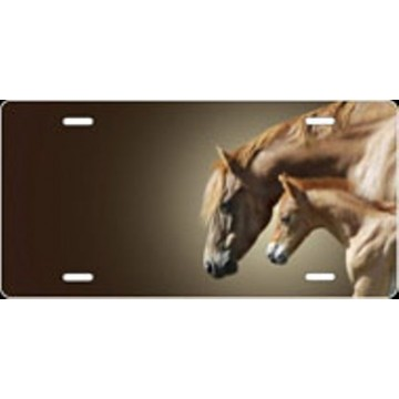 Colt And Mare Horse Offset Airbrush License Plate