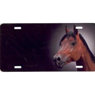 Bay Arabian Horse Offset Airbrush License Plate