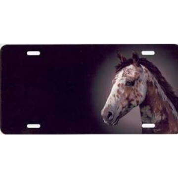 Appaloosa Horse Airbrush License Plate