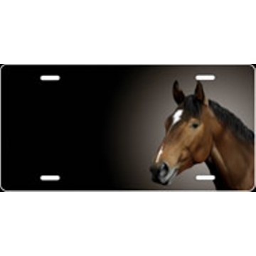 Bay Thoroughbred Horse Offset Airbrush License Plate