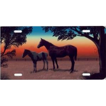 Colt And Mare Horse Full Color Airbrush License Plate