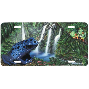 """Rainforest Frogs"" License Plate"