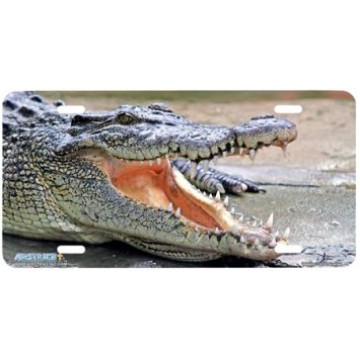 Alligator Airbrush License Plate
