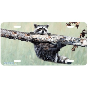 """""""Chin Up"""" Raccoon License Plate"""