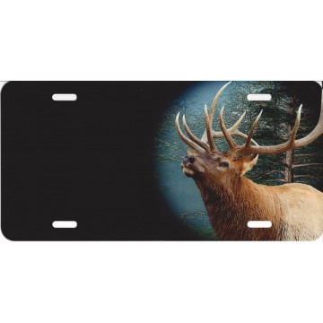Offset Elk On Black License Plate