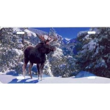Winter Moose Airbrush License Plate