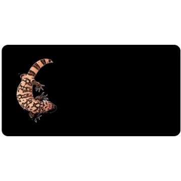 Offset Gila Monster On Black Photo License Plate