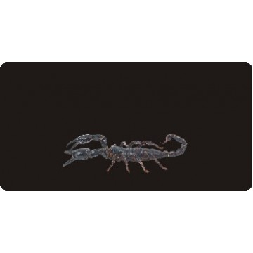 Scorpion On Black Photo License Plate