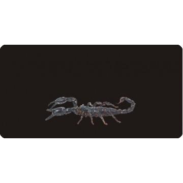 Scorpion On Black Photo License Plate
