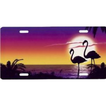 Flamingo Beach Airbrush License Plate