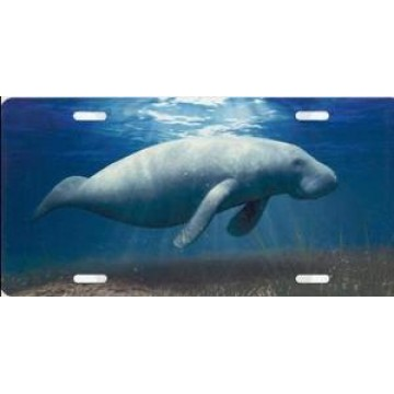 Manatee Airbrush License Plate
