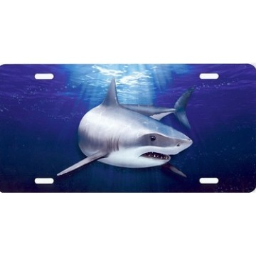 Great White Shark Airbrush License Plate