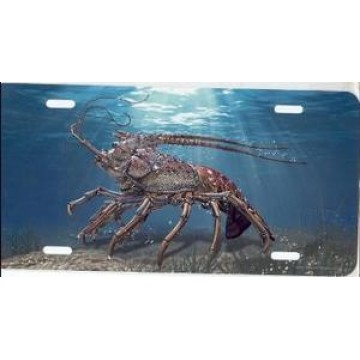 Crab Under Water Airbrush License Plate