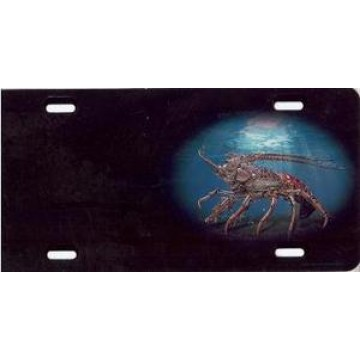 Crab Offset Airbrush License Plate