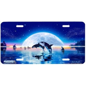 Swim in the Moon Killer Whale License Plate