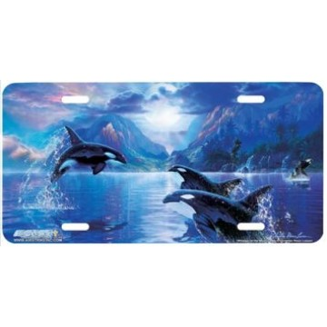 Whisper of the Moon Whale License Plate