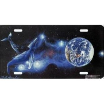 Orca with Earth License Plate
